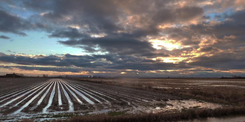 Farm, Colorado Springs, class, Rocky Mountain Food Report